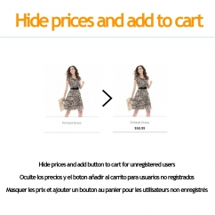 Hide price and add to cart